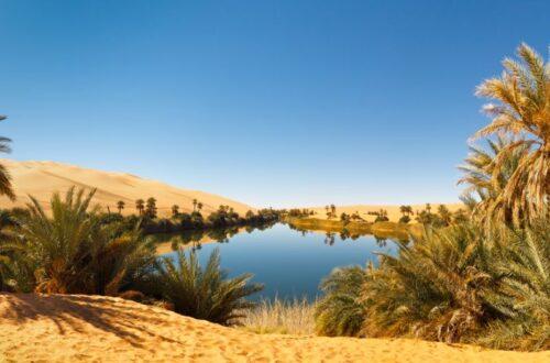 Woda na pustyni